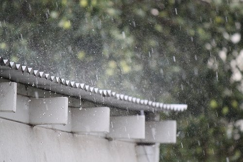 Roof Rain